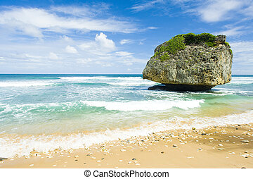 Bathsheba, East coast of Barbados, Caribbean