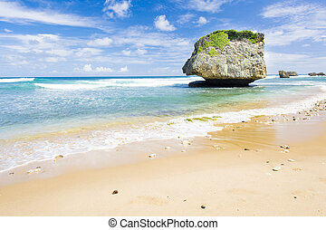Bathsheba; East coast of Barbados; Caribbean