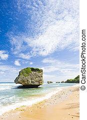 Bathsheba, Eastern coast of Barbados, Caribbean