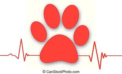 batida coração, pata, -love, animal, cardiograma