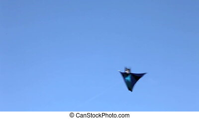 Batman flying in the sky