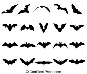 bats - Black silhouettes of different bats, vector