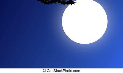bats fly over the full moon - Bats fly over the full moon, ...
