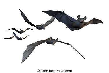 Bats Flying - on White - A group of six bats flying - 3D ...
