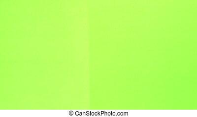 battant, écran, vert, planche
