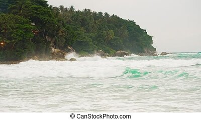 battement, arbres., vagues, contre, exotique, storm., rivage, paume, mer, île, fort, vagues