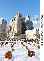 Battery Park under december's snow.