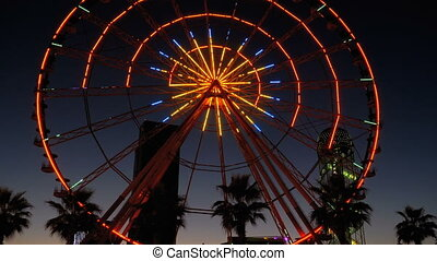 Ferris Wheel Lights at Night and Palm Trees - BATUMI,...