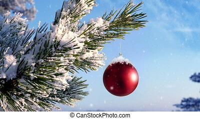 Bauble hanging on a christmas tree covered with snow