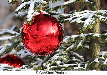 bauble - Red Bauble on Christmas Tree with Reflection