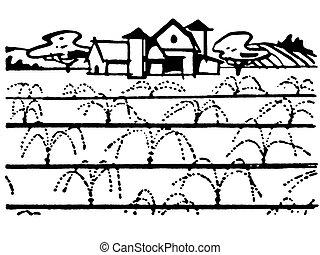 bauernhaus, weißes, version, schwarz, abbildung