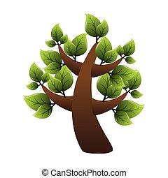 baum, ökologie, grün
