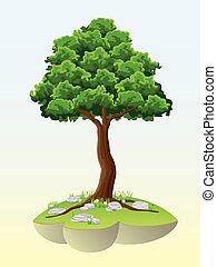 Baum auf einer Insel