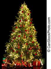 baum, erleuchtet, weihnachten