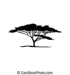 baum., flora, silhouette, vektor, afrikanisch, akazie