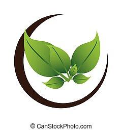 baum, pflanze, umrandungen, blätter, hälfte