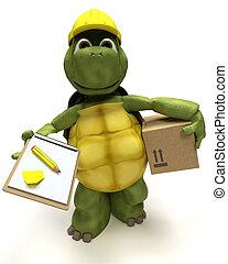 bauunternehmer, annahme, schildkröte, postpaket