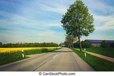 bavaria, canola, campos, springtime, -, árvore, amarela, celeiro, flores, estrada