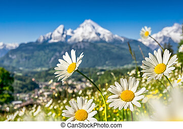 Bavarian Alps with beautiful flowers and Watzmann in spring, Germany