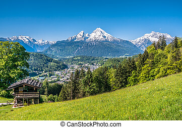 Bavarian Alps with beautiful flowers and Watzmann in springtime, Germany