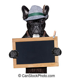 bavarian german dog holding a blank blackboard
