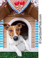 bavarian dog house - dog inside a bavarian house or beer...