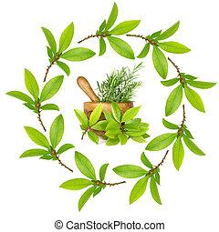 Bay and Rosemary Herbs