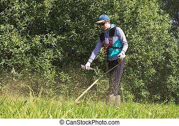 bay cutting grass
