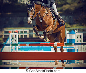 Bay horse with a rider jumping over a high barrier in equestrian jumping competitions.