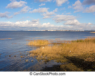 Bay in Sankt-Peterburg - autumn landscape with dry grass on ...