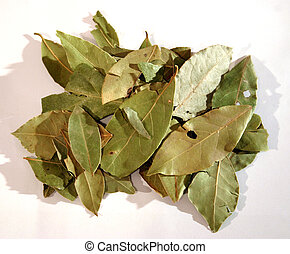 Bay leafs 2