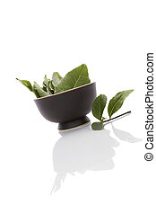 Bay leaves. - Bay leaves isolated on white background....