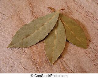 bay leaves - Bay leaves on paperbark background