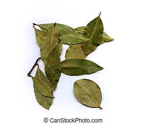 Bay Leaves - Bay leaves on white