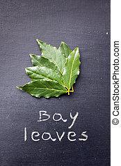 Bay leaves on blackboard