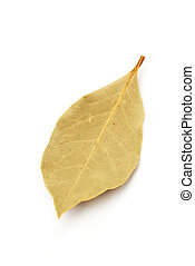Bay leaves - Dried bay leaves on white background