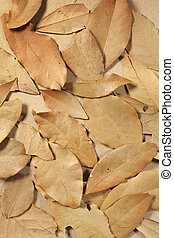 Bay leaves - Dried bay leaves on a brown tabletop