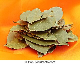 bay leaves - green bay leaves over orange tectile background