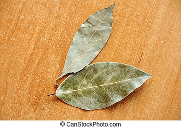 Bay leaves - An image of a green bay leaves