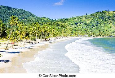 bay;, maracas, trinidad