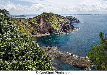 Bay of Island New Zealand - Roberton Island - Aerial view of...