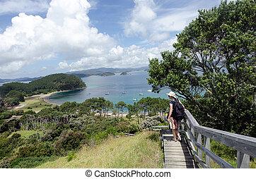 Bay of Island New Zealand - Roberton Island - Visitor on ...