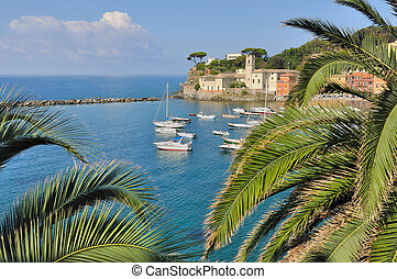 Bay of Silence- Siestri Levante - and palm trees - Ligurie- Italy