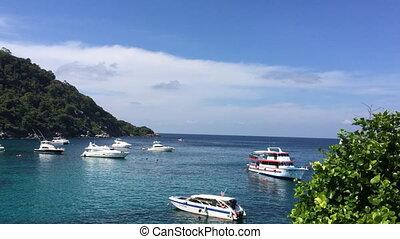 Bay with yachts shot at sunny day