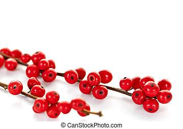 bayas, navidad, rojo
