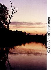 bayou, coucher soleil