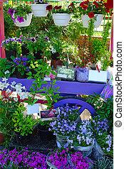 Bazaar of indoor flowers