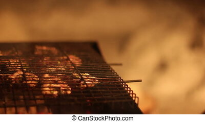 BBQ time. Closeup shot, HD