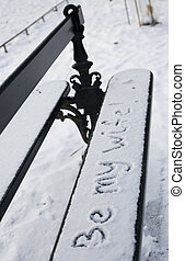 Be my wife. Handwriting on a bench covered with snow in the Luxembourg garden in Paris, France