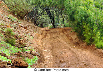 Beach Access - Rough and bumbpy, back road, leads to a...